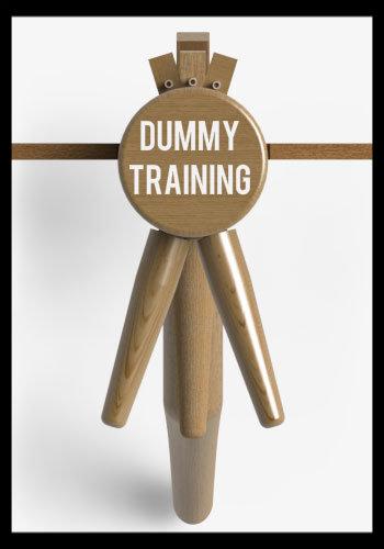 Dummy Training Article